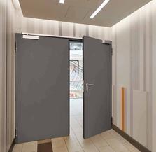 Стальные двери для объектов OD